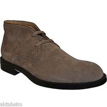 Tod's Taupe Suede Lace-Up Chukka Boot Size 9.5 Uk 9 Nib Photo