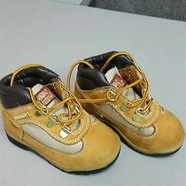 Toddler Boy's Timberland Field Boots Wheat Nubuck Sz 7 1/2 Hiking Fashion Photo