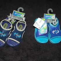Toddler Boys Speedo Aqua Shock Swim Shoes Sandals Nwt Defective Size 5/6 Lk Photo