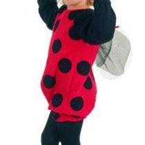 Toddler Ladybug Ladybird Bee Bumblebee Girls Fancy Dress Age 2-3 Years Photo