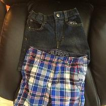 Toddler Lot Brand Name Shorts 18 Months Hilfiger Calvin Klien Photo