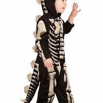 Toddler Stegosaurus Fossil Costume Photo