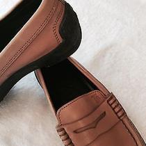 Tods Loafer Size 7  Photo