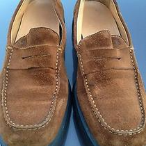 Tods Men Shots Size'8.....made in Italy.....nice Photo