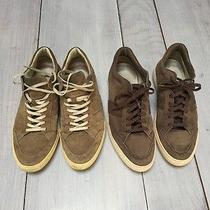 Tods Sneakers Photo