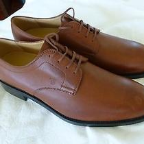 Tods Tod's Savile Derby Uomo Shoes 12.5 New Other With Box Photo