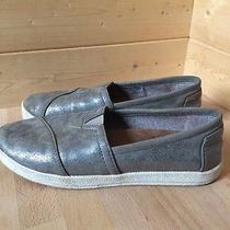 Tom's Avalon Gray  Slip-on Sneaker Size 6 Photo