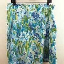 Tommy Hilfiger 14 Blue Floral Skirt Casual Cotton Flare Aline Cute Wearable Art  Photo