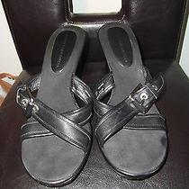 Tommy Hilfiger  Black Leather Buckled Slides Sandals Sz 10 M Photo