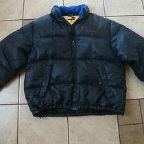 Tommy Hilfiger Duck & Feather Down Filled Water Stop Water Resistant Jacket L Photo