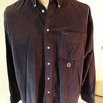 Tommy Hilfiger Navy Blue Button Down Corduroy Shirt W Pocket Euc Mens Size L  Photo