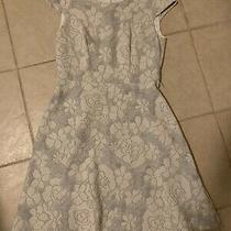 Tommy Hilfiger Women Dress White Gray Floral 4 Photo