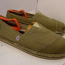 Toms Classic Canvas Ash Grey  Mens  Size 13 Sneakers Shoes  Photo