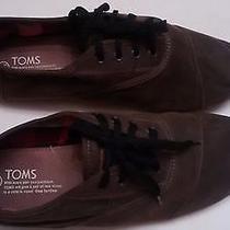 Toms - Cordones - Brown 10.5 Photo