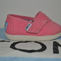 Toms Pink Infant Size 4 Photo