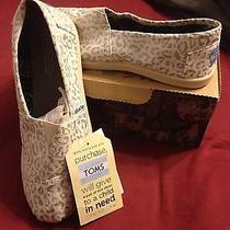 Toms Shoes Silver Snow Leopard  Photo