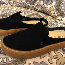 Toms Sunrise Navy Suede Leather Mules Slip-on Comfort Sneakers Size 5 Htf Euc Photo