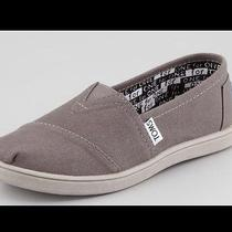 Toms Youth Canvas-Ash New in Box Photo