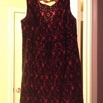 Torrid Lace Dress Photo