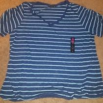 Torrid Navy Blue/light Blue Stripped Shirt Photo