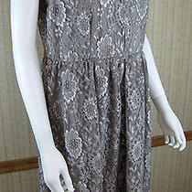 Torrid Silver Gray Party Lace v-Neck Knee Lenth Lined Skater Dress Size 16 A429 Photo