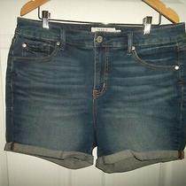 Torrid Women's Size 12 Denim Blue Cuffed Shorts Photo