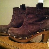 Tory Burch Ankle Boots Photo