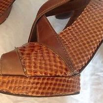 Tory Burch Brown Deidre Strappy Snakeskin Platform Shoes Sandal S 7.5b Pre-Owned Photo