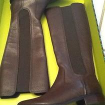 Tory Burch Christy Riding Boot/ Coconut Brown/ Nib/ Msrp 495 Sold out/5.5 Photo