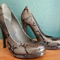 Tory Burch Jude Amazon Snake Print Leather Pumps Size 7.5 Sexy Heels Free Ship Photo