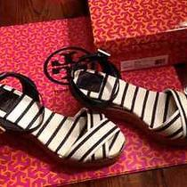 Tory Burch Karissa Espadrille Wedges W Size 10 Colornavy and Natural Photo