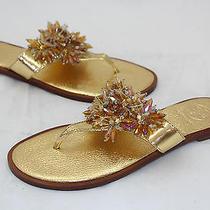 Tory Burch Mirror Metallic Aida Thong Sandals 8m Pale Gold Flip Flops Flats New Photo