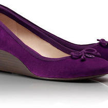 Tory Burch Purple Suede Chelsea Wedge Us Size 6 (Brand New in Box) Photo