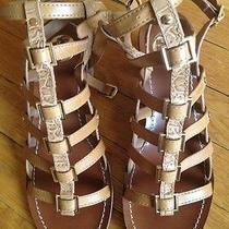 Tory Burch Sandals Photo