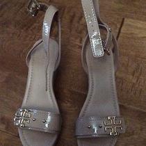 Tory Burch Shoes Photo