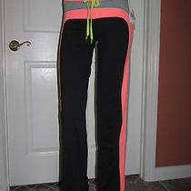 Trina Turk Recreation Stripe Track Pants Hot Coral  Size S Small Nwt. Photo