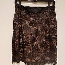 Trina Turk Sexy Frou Lace Skirt Black Lace Blush Size 8 Photo