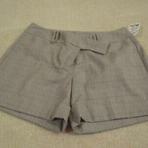 Trixie  Lulu Shorts Size 6 New With Tags Cuff and Pockets Ladies Dressy Photo