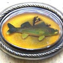 True Vintage Fossilized Look Trout Fish in Acrylic Cast Metal Belt Buckle Photo