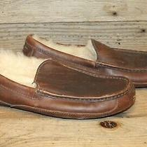 Ugg Ascot Mens Brown Leather Sherpa Lined Moccasin Slipper Shoes Sz 11 Photo