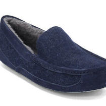 Ugg Ascot Wool Slippers 11 Photo