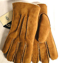 Ugg Australia Chestnut Brown  Shearling Gloves Mens Xl  New 175 Photo