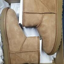Ugg Australia Classic Mini Ii Suede Sheepskin Boots 7 Med Chestnut 1016222 New Photo