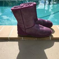 Ugg Australia Classic Short  S/n 1000792 Glitter Grape Shearling Boots Sz 5 Photo