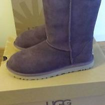 Ugg Australia Classic Short  Suede Boots Port Sz 7 New in the Box Photo