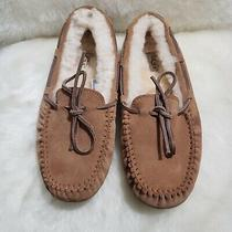 Ugg Australia Dakota Chestnut Suede Shearling Slippers Womens Size 6 Photo