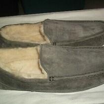 Ugg Australia Grayish Slippers Soft Fluffy Lining / Mens  Sz. 17 / Nice & Clean Photo