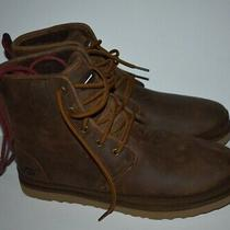 Ugg Australia Harkley Waterproof Lace Up Boot 1017238 Grizzly Brown Men Size 13 Photo