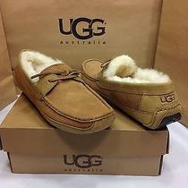 Ugg Australia Mens Byron Chestnut Brown Slippers Size 12 Us Photo