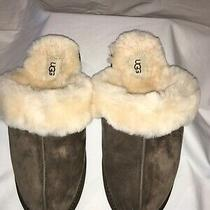Ugg Australia Scuffette I Slipper Espresso Genuine Shearling Comfort 10 Eu 41 Photo